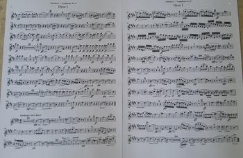 Schubert (3).JPG