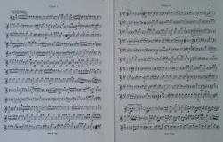 Schubert (1).JPG