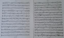 Schubert (2).JPG